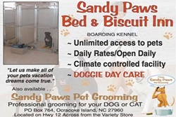 doggy daycare in the outer banks