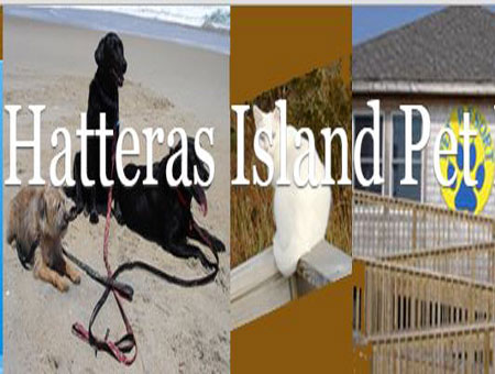 pet day care outer banks