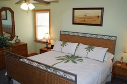 pet friendly byowner vacation rental in the outer banks